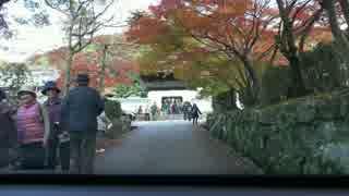 興聖寺・琴坂(4K)