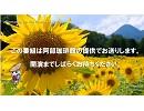 自然災害情報共有放送局ニコ生オープニング映像6 eco+BGM(480p)364/300kbps