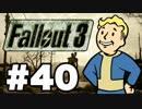 【Fallout3】危険なお散歩【実況】#40