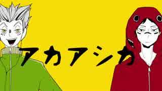 【手描き替歌HQ!!】アカアシカ【うたった】