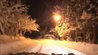 2014年12月6日大雪警報の青森市の様子【フ