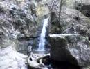 御岳山の七代の滝を流れに逆らわずに追いかけたって
