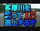 【ゆっくり旅行】多摩川を歩って遡上する