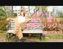 【れいちぇる】好き!雪!本気マジック【踊ってみた】 thumbnail