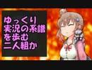【ゆっくり解説単発祭り】スレマ解説(ささゆかいせつver)