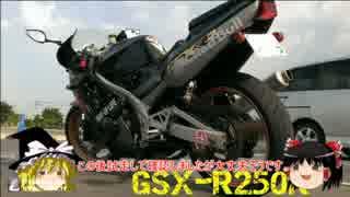 レプリカで行こう!「番外編」GSX-R250R