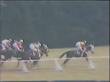 1982年第43回菊花賞 ホリスキー - ニコニコ動画