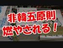 【非韓五原則】 燃やされる!