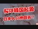 【桜は韓国起源】 日本人の神回答!
