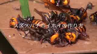 スズメバチホイホイの作り方