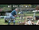 WE ARE THE WILD PR