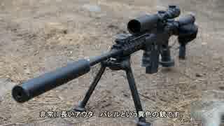 サバゲー装備紹介 銃編②