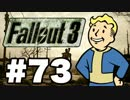 【Fallout3】危険なお散歩【実況】#73