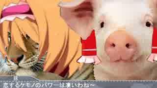 【単独合同動画企画】マレーグマと虎の生肉Kiss.mp4