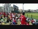 広島東洋カープ 2015年オープン戦開幕戦1-9応援歌&緒方監督応援歌20150221