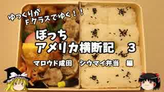 【ゆっくり】アメリカ横断記3 マロウド成田 シウマイ弁当編 thumbnail