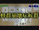 【アナログゲーム】ミツバチマッチ!【ニコニコ自作ゲームフェス5】