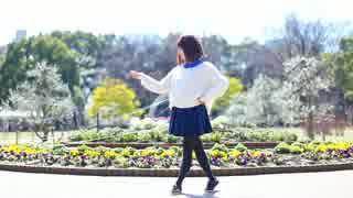 【コムギ】 Yellow  踊ってみた 【(・×・)9】