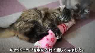 【#367】 ケリケリ玩具 【猫万歳】