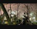 オレも宝塚の夜桜を見に行きたいっ!