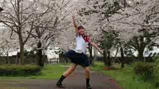 【月浪】『きょうもハレバレ』踊ってみた【高校入学!】