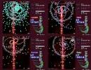 東方妖々夢 難易度別に弾幕を比較してみた STAGE2