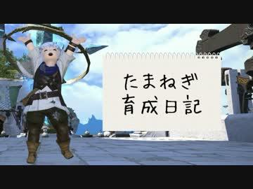 【新生FF14】たまねぎ育成日記【ゆっくり実況プレイ】Part,6