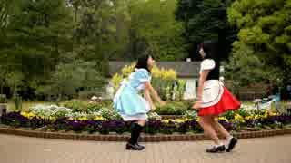 【月猫】ドレミファミックス踊ってみた【RINO】