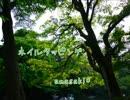ネイルタッピング【amasaki*】