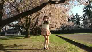 【とーま。】GIFTを踊ってみた【桜の奇跡】