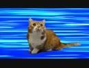 【猫アニソン】ジョジョの BLOODY STREAM替え歌【マンチカンズ】