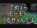 【Minecraft】ありきたりな工業と魔術S2 Part51【ゆっくり実況】