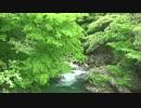 [Full-HD] 新緑の大滝を眺めるだけの動画 (山形県東根市)