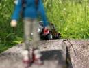 野良猫式 ジョニーの旅日記 第七話 山に登ってみようと思うんだ