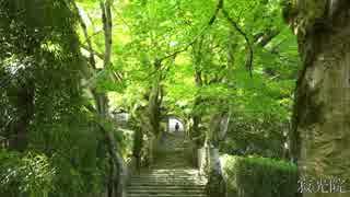 新緑の京都(2015/5/10)