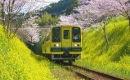 【いすみ鉄道】千葉県ローカル線の旅 part.1