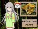 【モバマス】星輝子とキノコの話30 アンズタケ