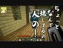 【Minecraft】ぼくらののんびりマイクラ生活 Part.9【実況】