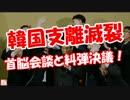 【韓国支離滅裂】 首脳会談と糾弾決議!