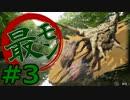 【実況】最低限文化的な狩りをするモンスターハンター4G #3【MH4G】