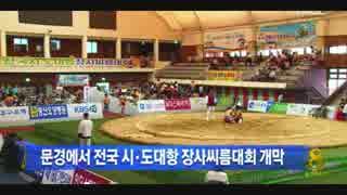 【マジ】韓国が「起源」を主張する、「韓