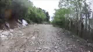 【CBR250Rは】川上牧丘林道【オフ車】
