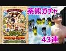 茶熊学園ガチャ43連 白猫プロジェクト