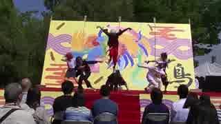 [15春]踊ってみた大阪府大「アイエエエエ!オドッテミタ!オドッ…」GOD団3/4 thumbnail