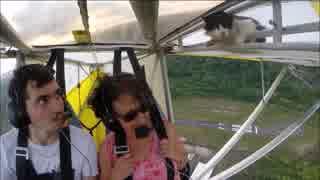 飛行機で空を飛んでいたら何故かネコが出現
