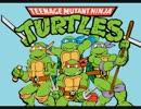 Teenage Mutant Ninja Turtles Opening(Instrumental)
