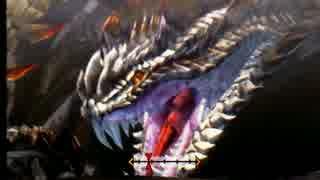【MH4G】色々なヘビィボウガンを使ってみ