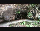 人工地震兵器証拠動画4Evidence of Man Made Earthquakes.