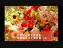 【superfly】愛を込めて花束を (⁻5キー)【ニコカラ】