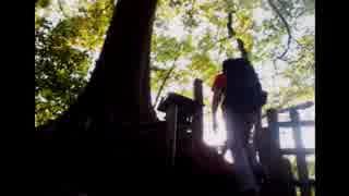 2014年07月28日 夕さんぽ ~石神井公園のち周辺散歩 - 石神井公園 Part2